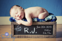 Martinsburg WV Newborn Photographer