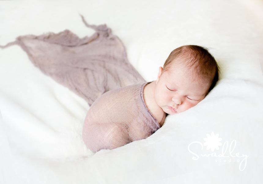 bodhi newborn photographers winchester va