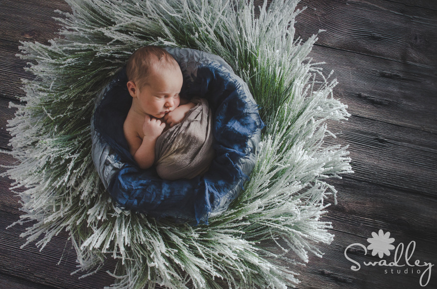Northern Virginia Newborn Photographer winter portrait