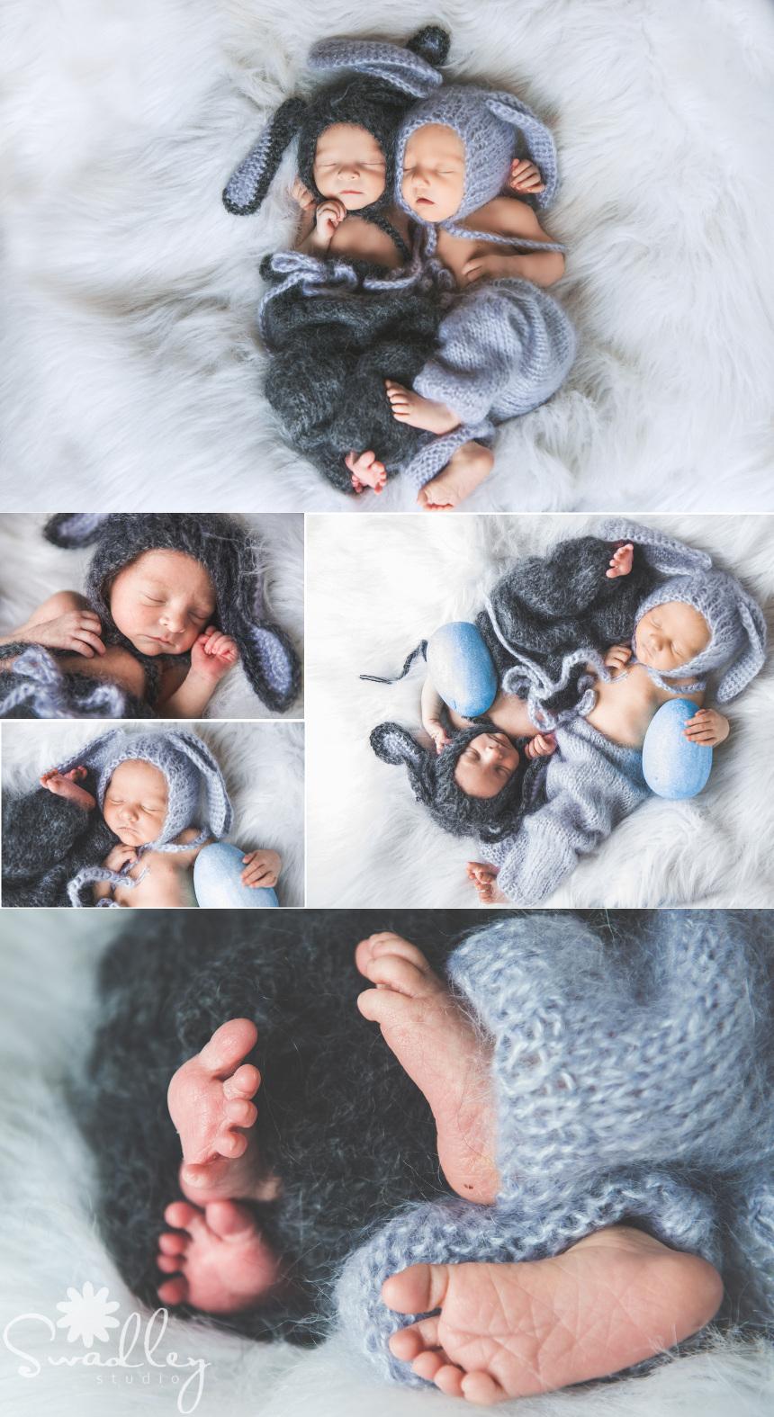 martinsburg newborn photographers twins multiples bunnies easter