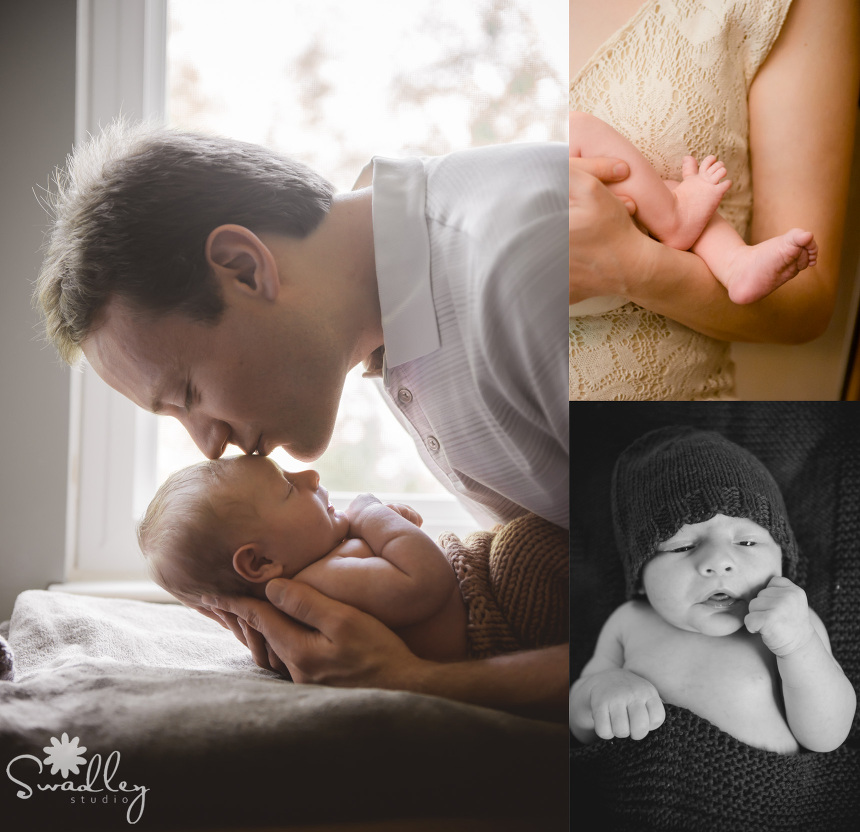 fairfax va newborn photographer