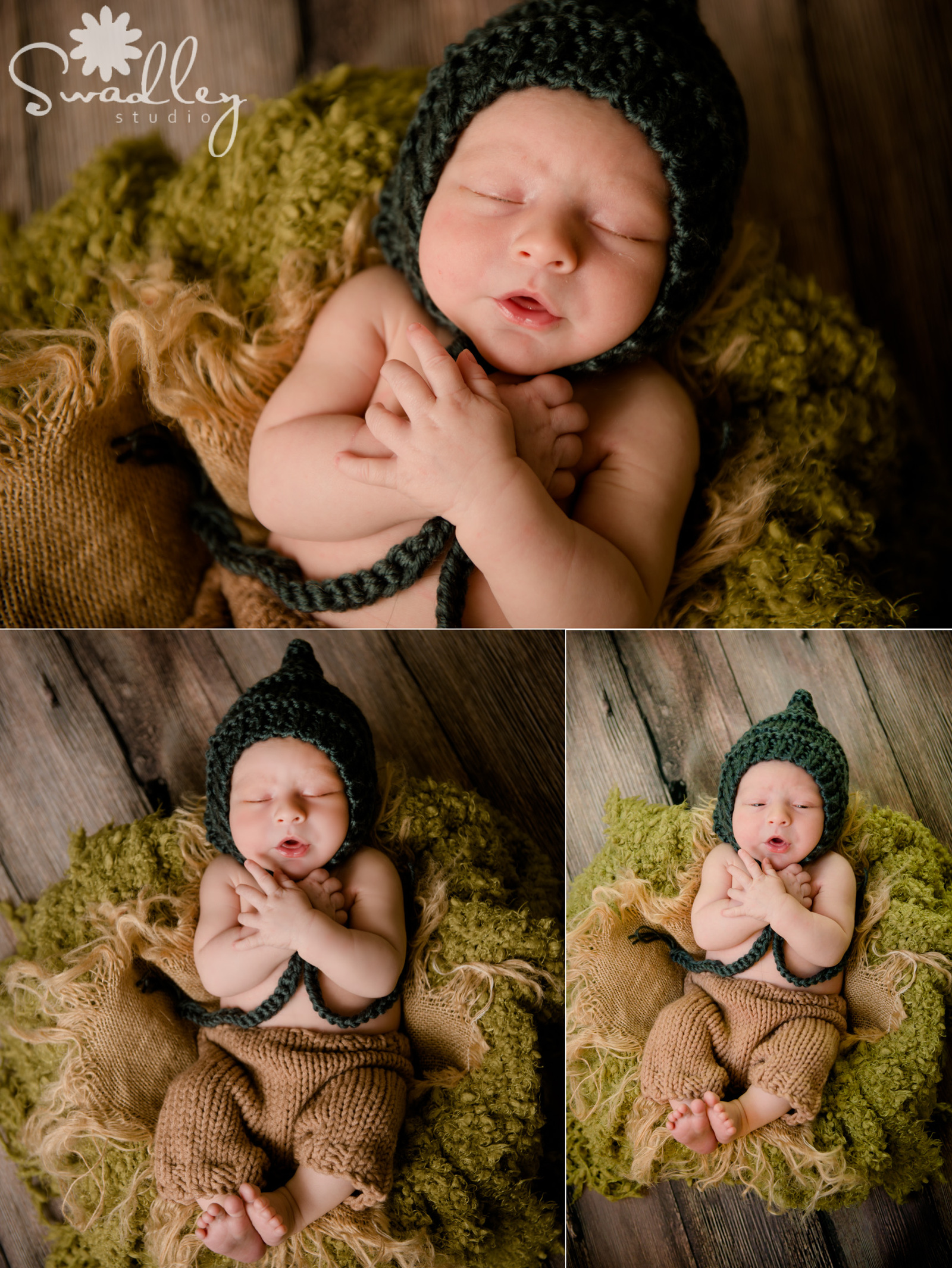 fairfax va newborn photographers