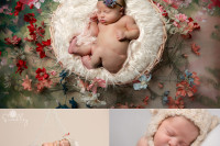 martinsburg wv newborn portraits photography