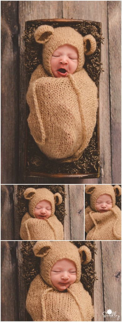 winchester va area newborn girl photography