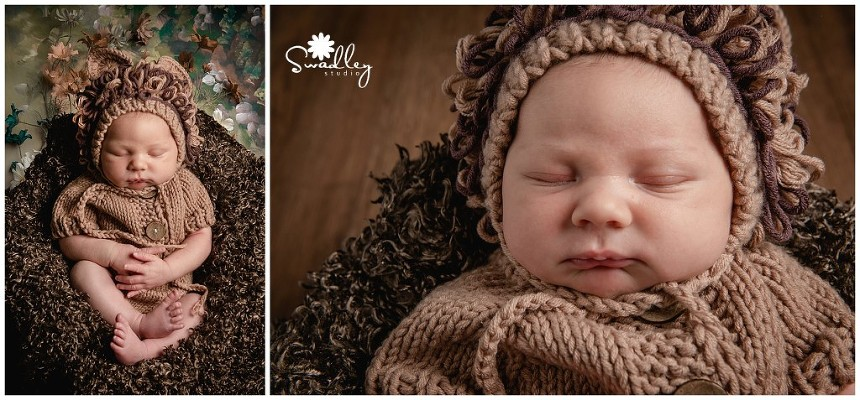 charles town, wv newborn photographer lion outfit