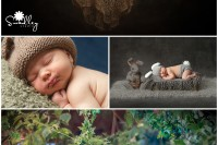 charles town, wv newborn photographer rabbit bunny bear