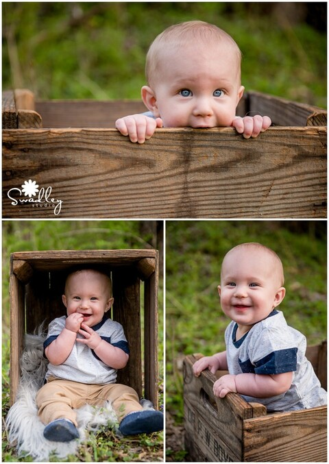 year in the life package newborns baby photographer