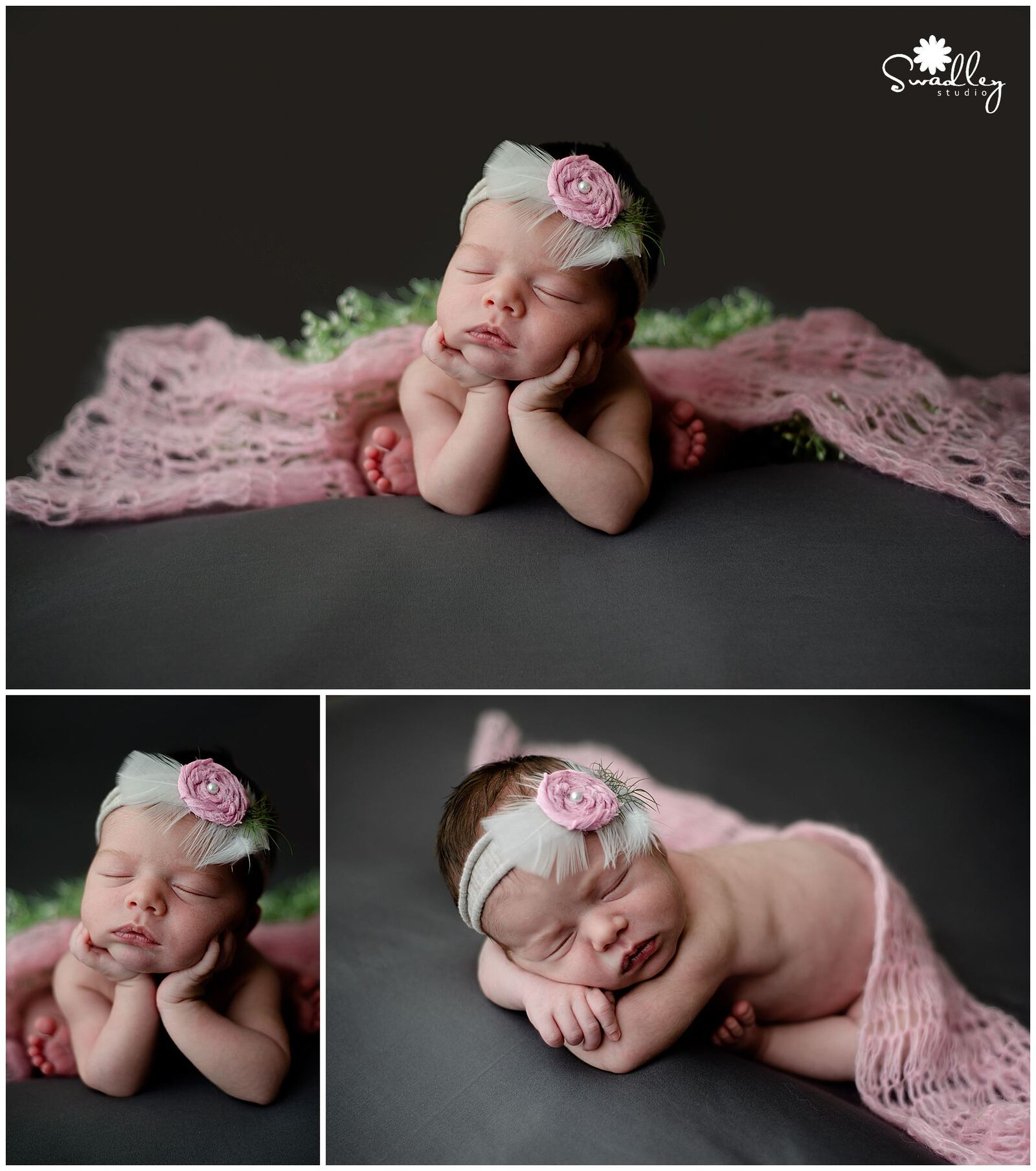 berkeley springs newborns photography portraits